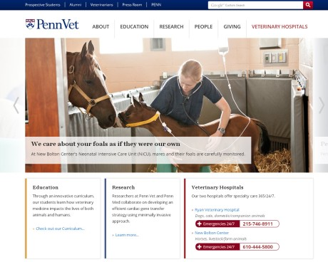 New Penn Vet website