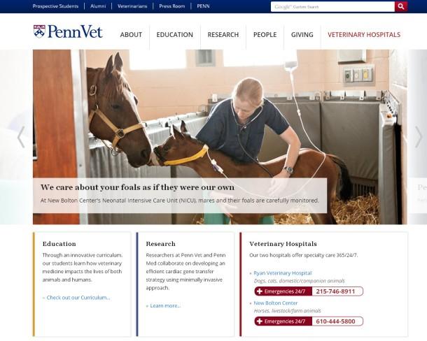 New Penn Vet website